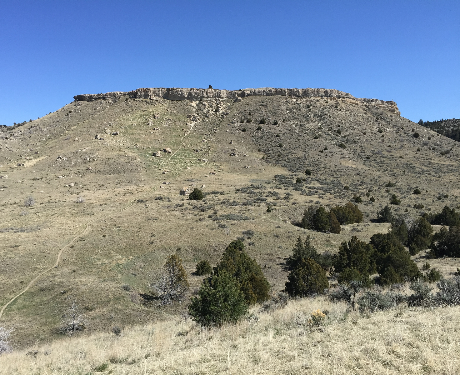 Native Americans herded bison over the edge of the cliff at Madison Buffalo Jump State Park. It's a fun day trip from Grey Cliffs Ranch in southwestern Montana.