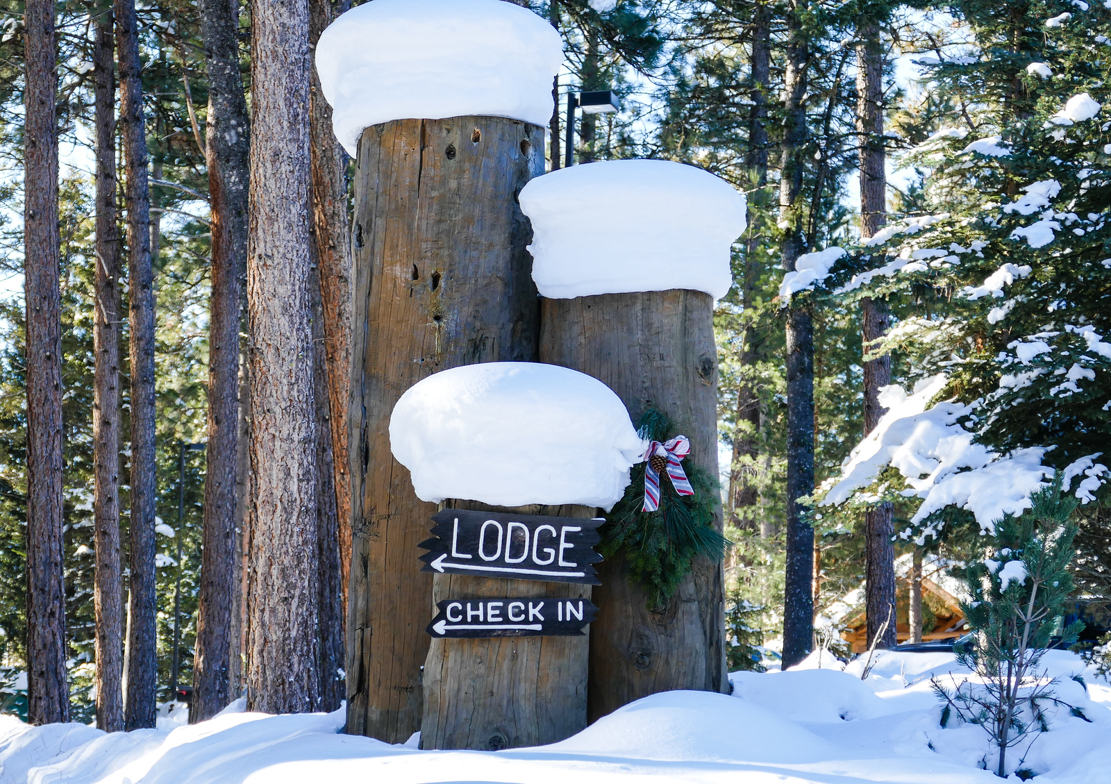 Enjoy a Montana winter getaway filled with luxurious touches at Triple Creek Ranch.