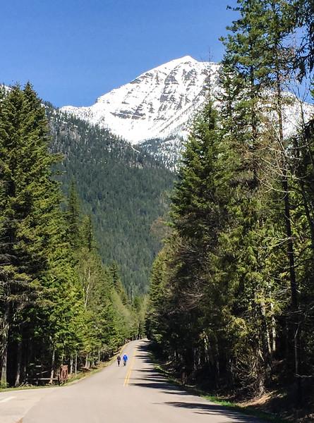 glaicer-national-park-spring