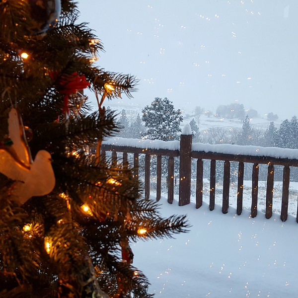 christmas tree with snowy landscape outside
