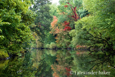 Ramapo Reflections