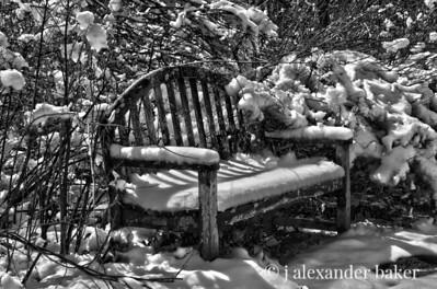 Garden Bench, Skylands, NJ
