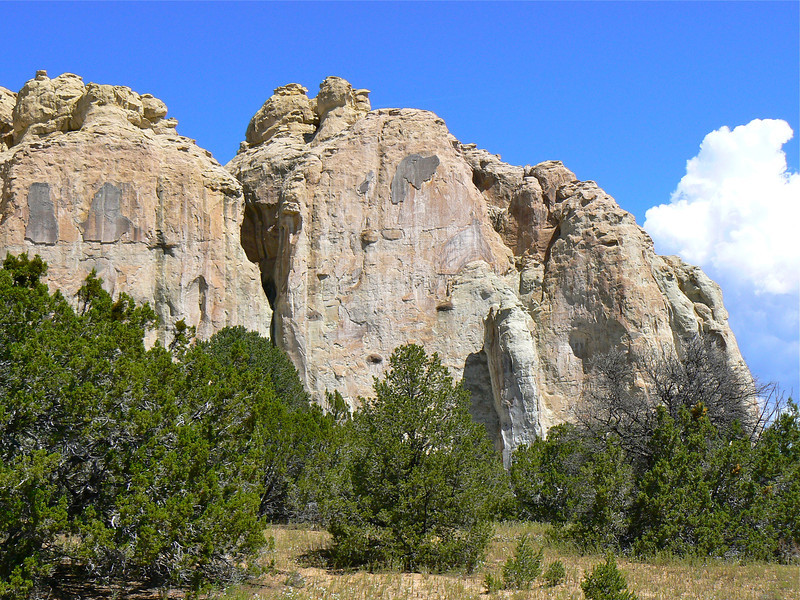 large rock cliffs over a pine forest