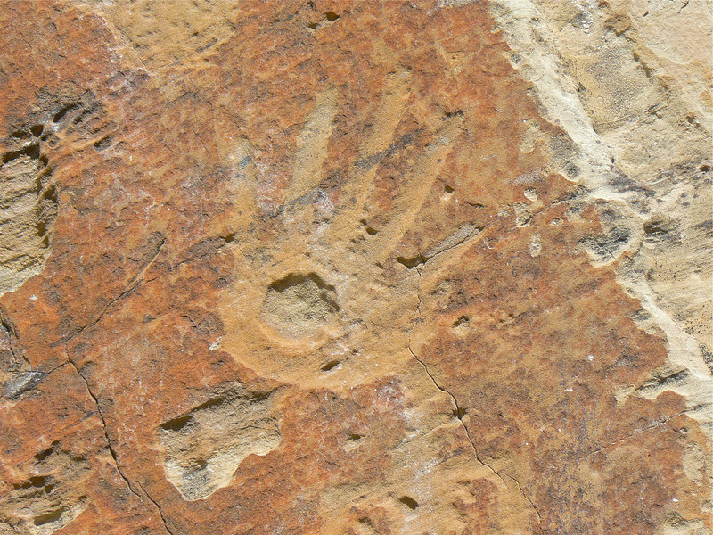 Handprint on the limestone wall at El Morro National Monument near Grants, New Mexico.