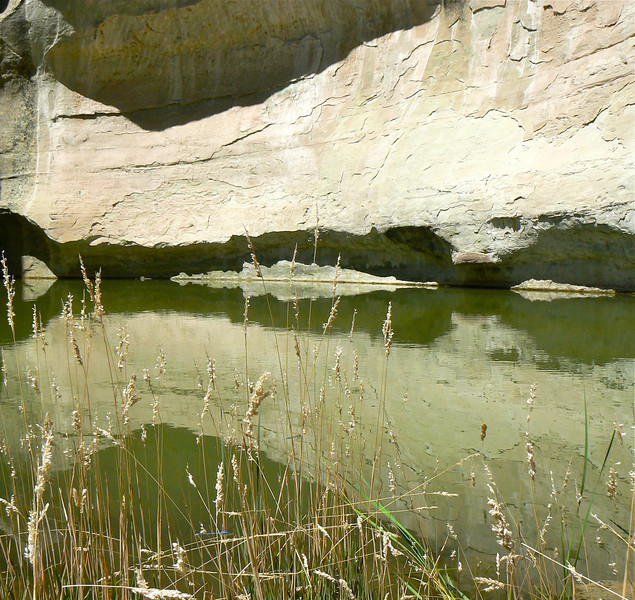 This watering hole offered ancient travelers a cool respite at El Morro National Monument near Grants, New Mexico.