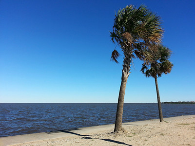 New Orleans, Louisiana On the banks of Lake Pontchartrain on the north side of New Orleans.