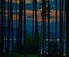 Cooper Lake, Woodstock NY