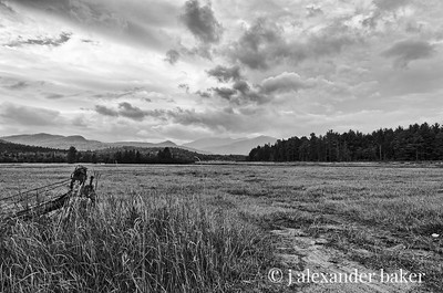 Adirondack meadow, Wilmington, NY