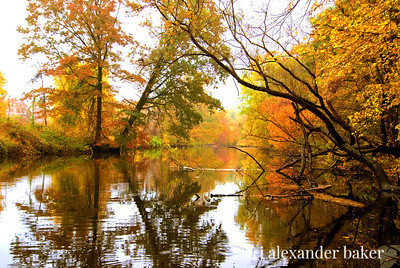 Ramapo River in Fall