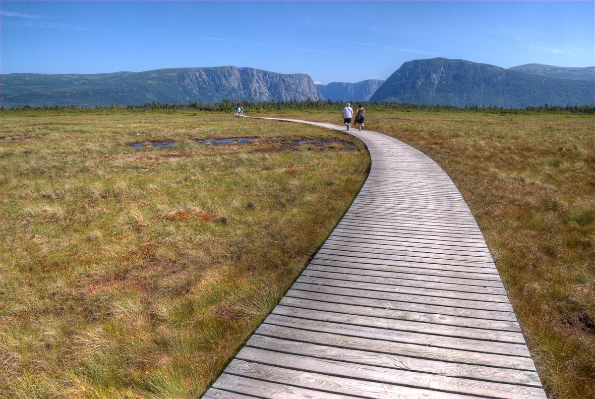 Walking on a boardwalk in Gros Morne National Park, Newfoundland