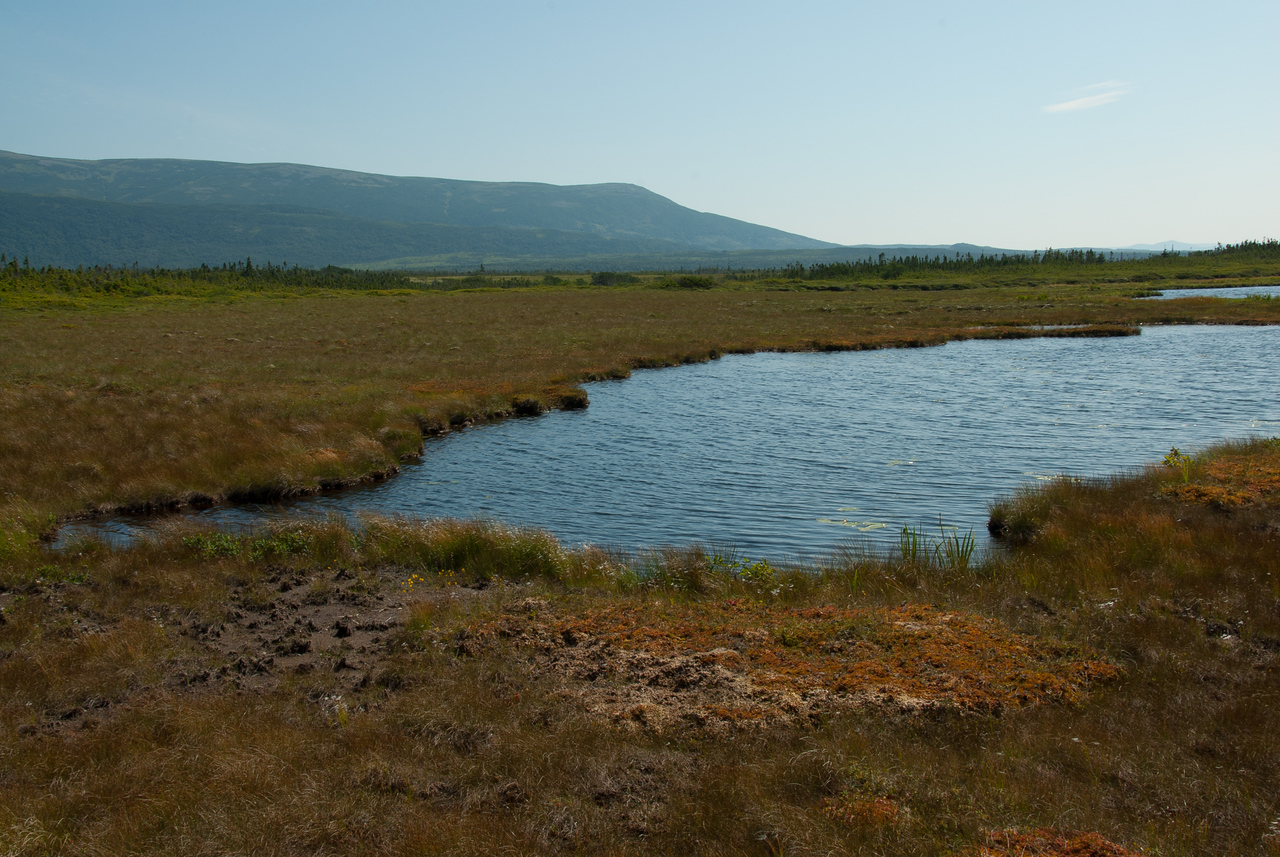 Interior of park on traverse from Gros Morne to Western Brook Pond