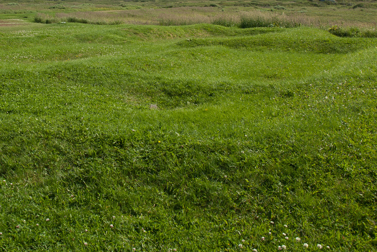 Landscape at L'Anse Aux Meadows, Newfoundland