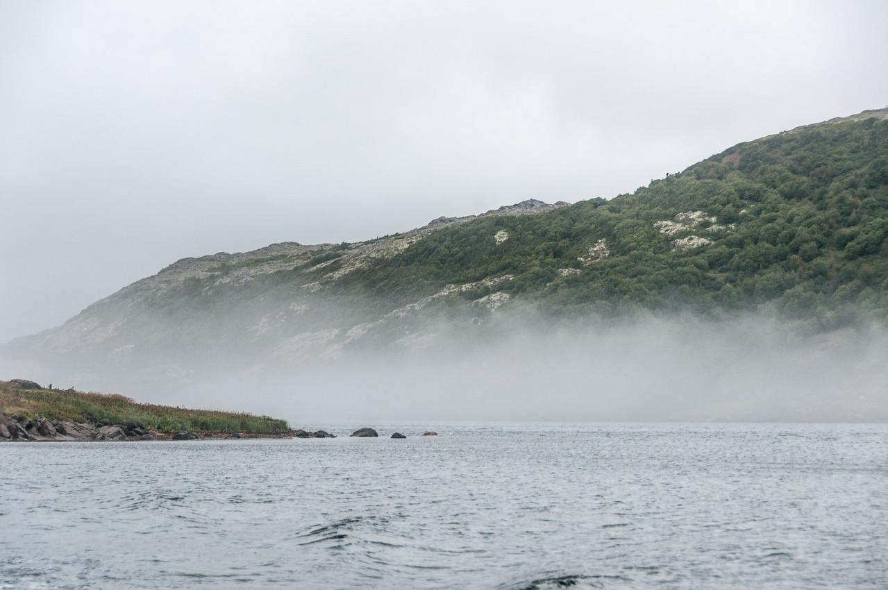 Fog near mountain in Red Bay, Canada