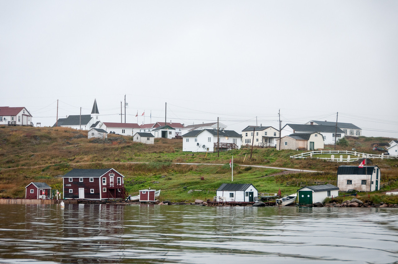 Houses in the community of Red Bay, Canada