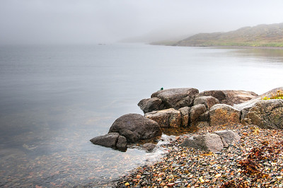 Rocky shores in Red Bay, Newfoundland and Labrador, Canada