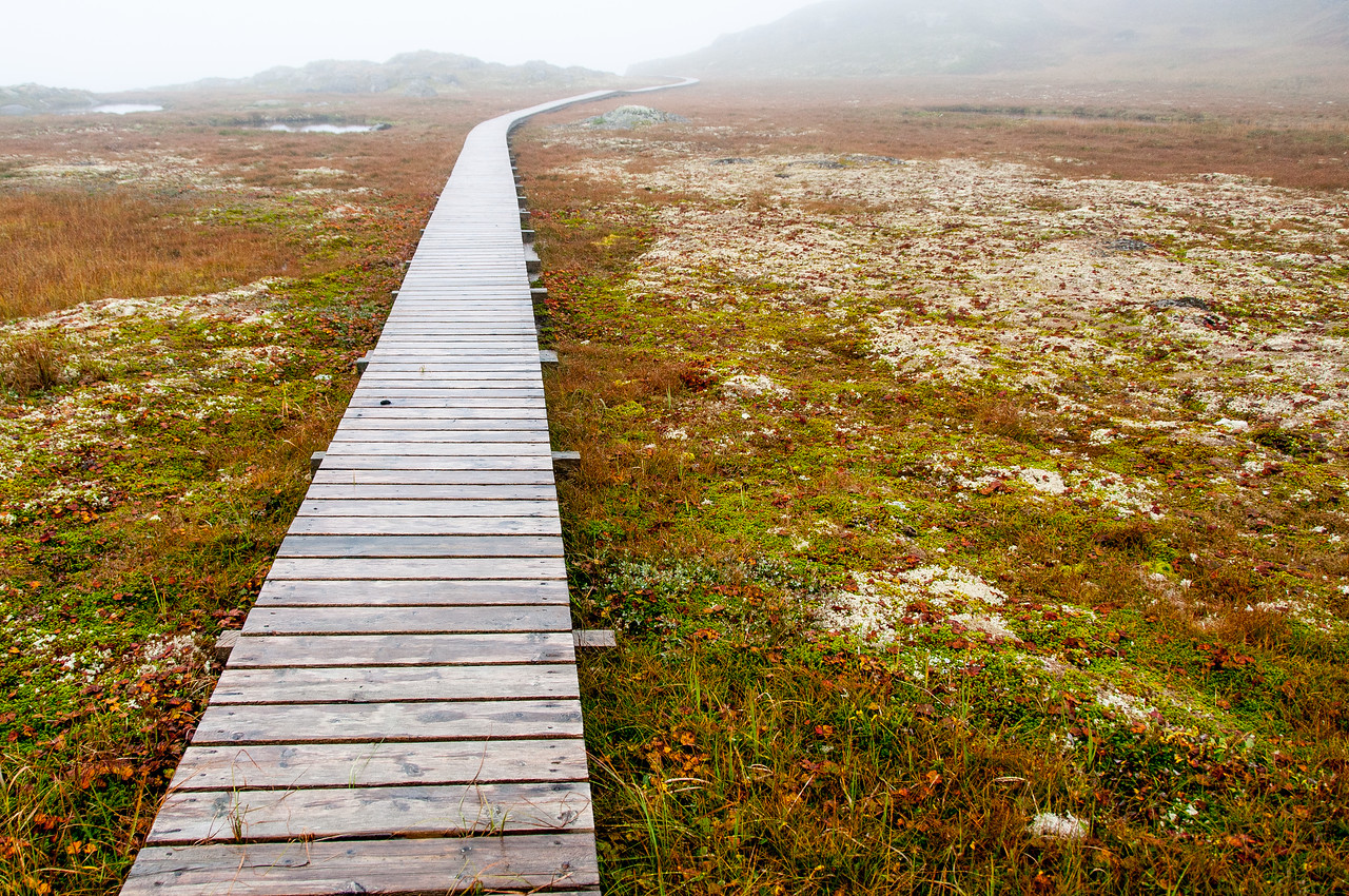 Boney Shore Walking Trail, Red Bay, Labrador, Canada