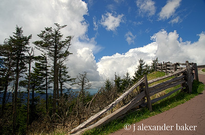 Split rail fence on the trail to the top of Mt. Mitchell, NC