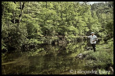 Wilson's Creek, NC
