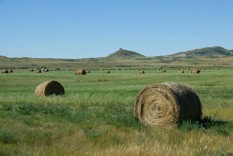 Rolls of hay in Theodore Roosevelt National Park