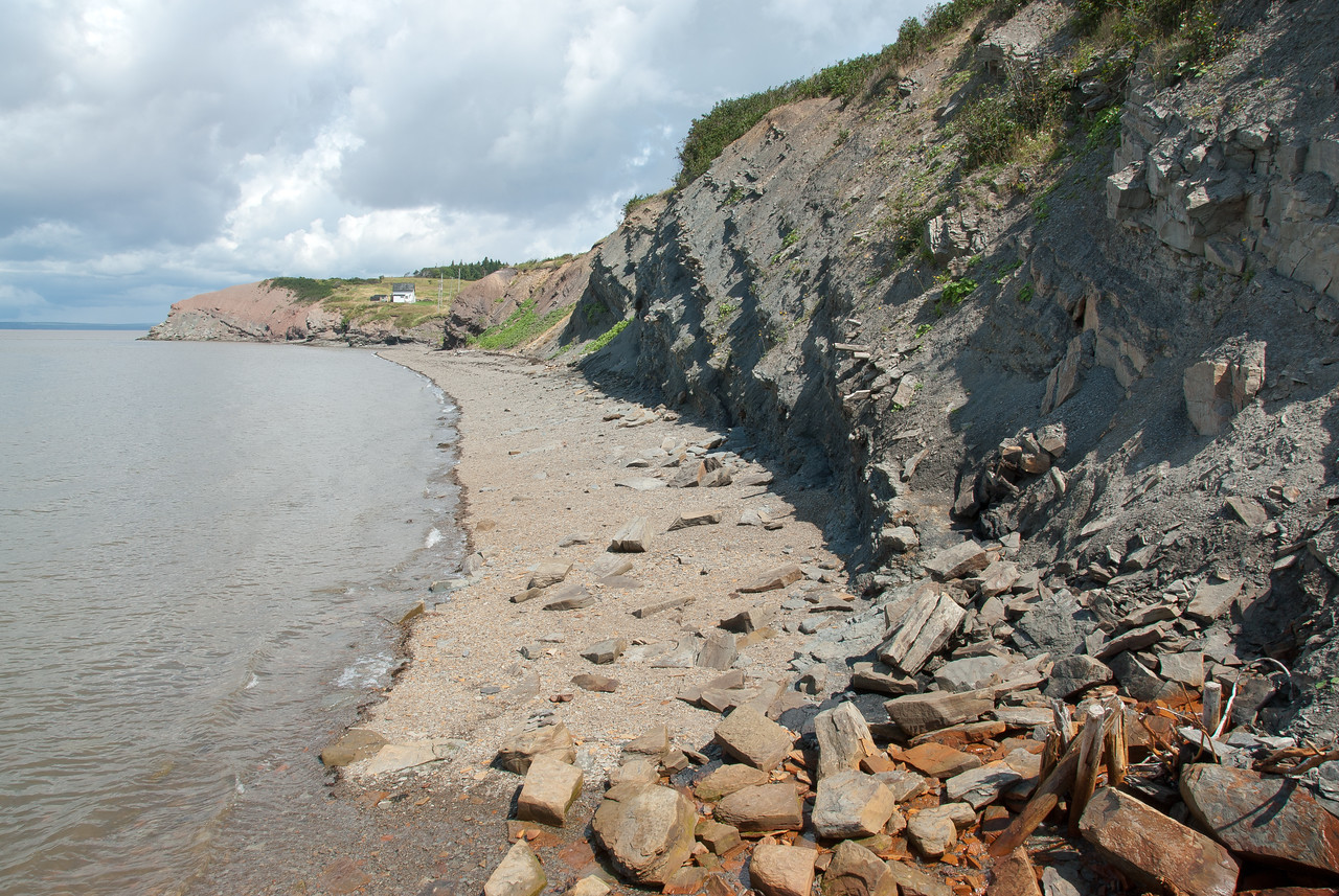 Shoreline near the Joggins Fossil Cliffs in Nova Scotia