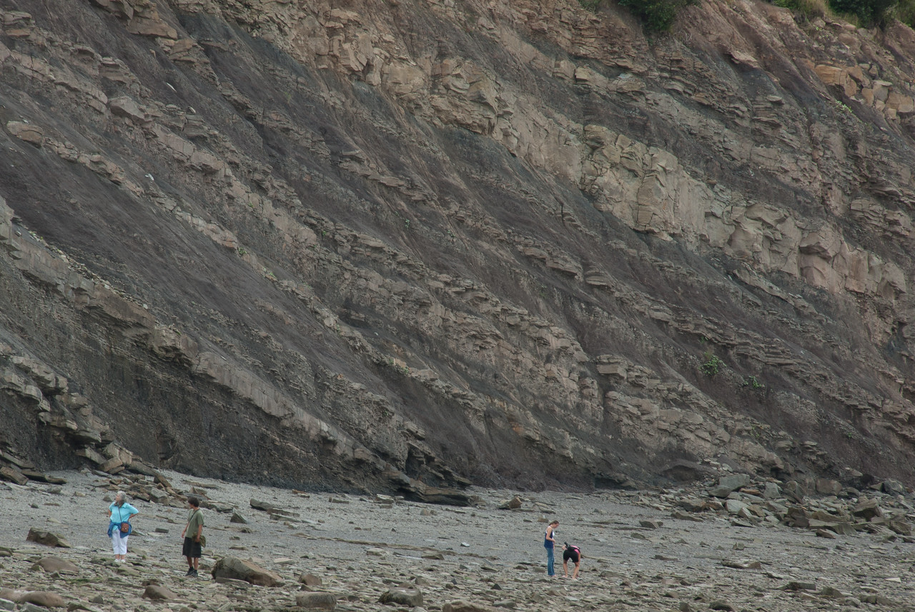 Joggins Fossil Cliffs in Nova Scotia, Canada