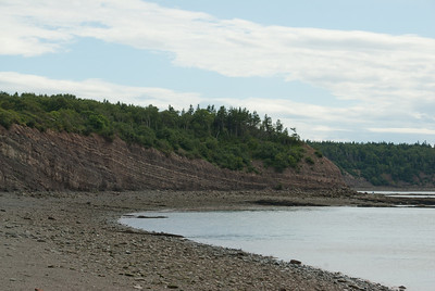 The Joggins Fossil Cliffs in Nova Scotia, Canada