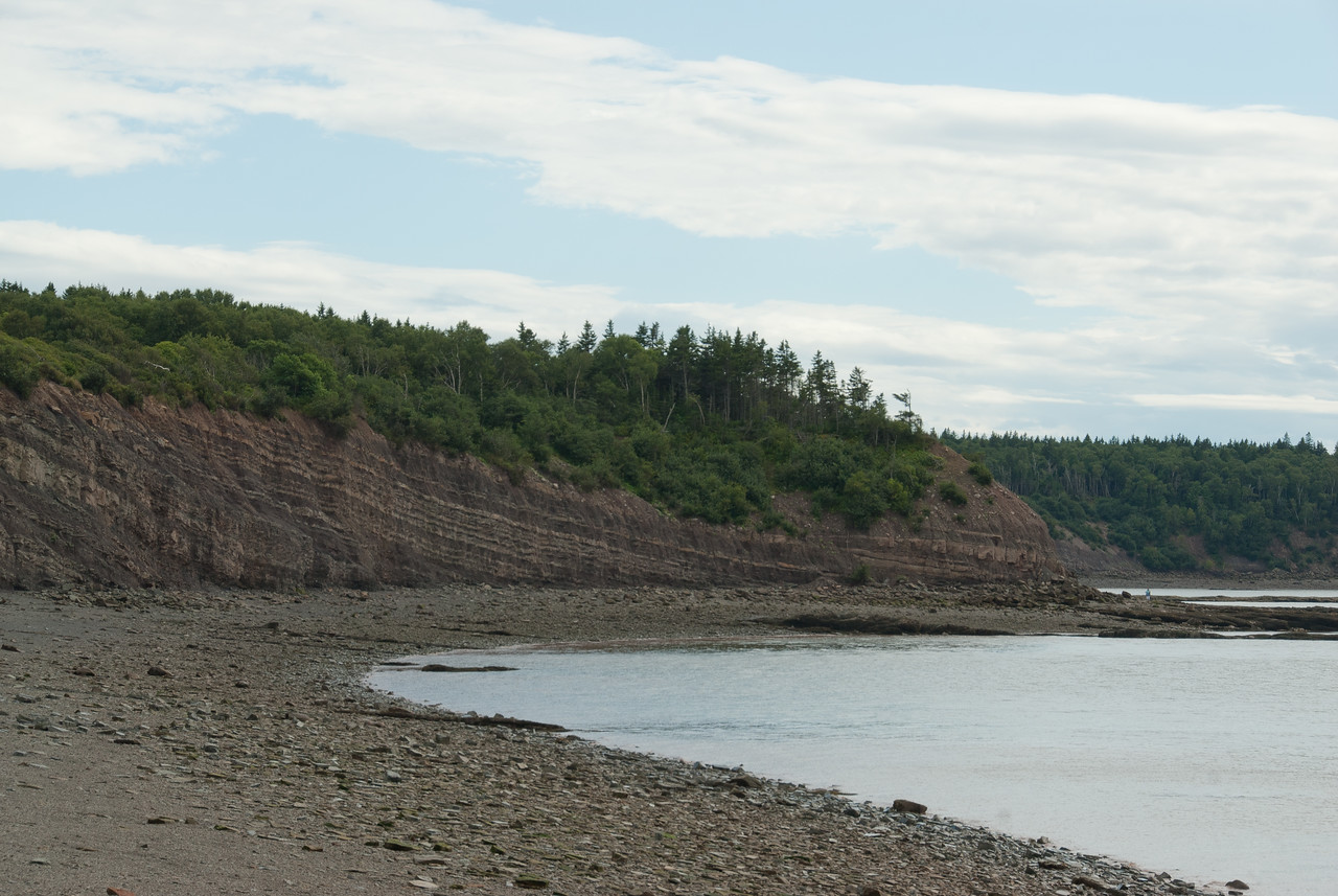 The Joggins Fossil Cliffs in Nova Scotia, Canada