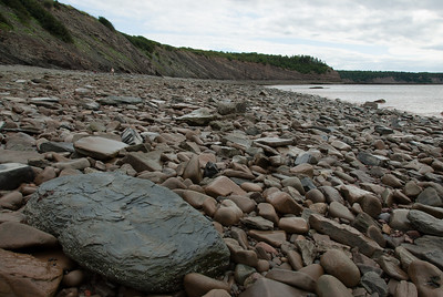 Fossilized rocks near Joggins Fossil Cliffs in Nova Scotia