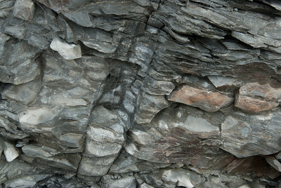 Fossilized rocks near Joggings Fossil Cliffs in Nova Scotia