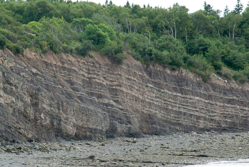 The Joggins Fossil Cliffs in Nova Scotia