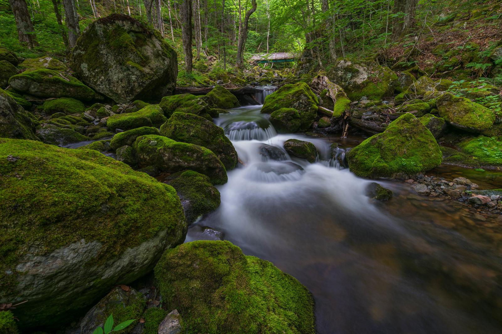 The beautiful green at Uisge Ban Falls Provincial Park in Nova Scotia