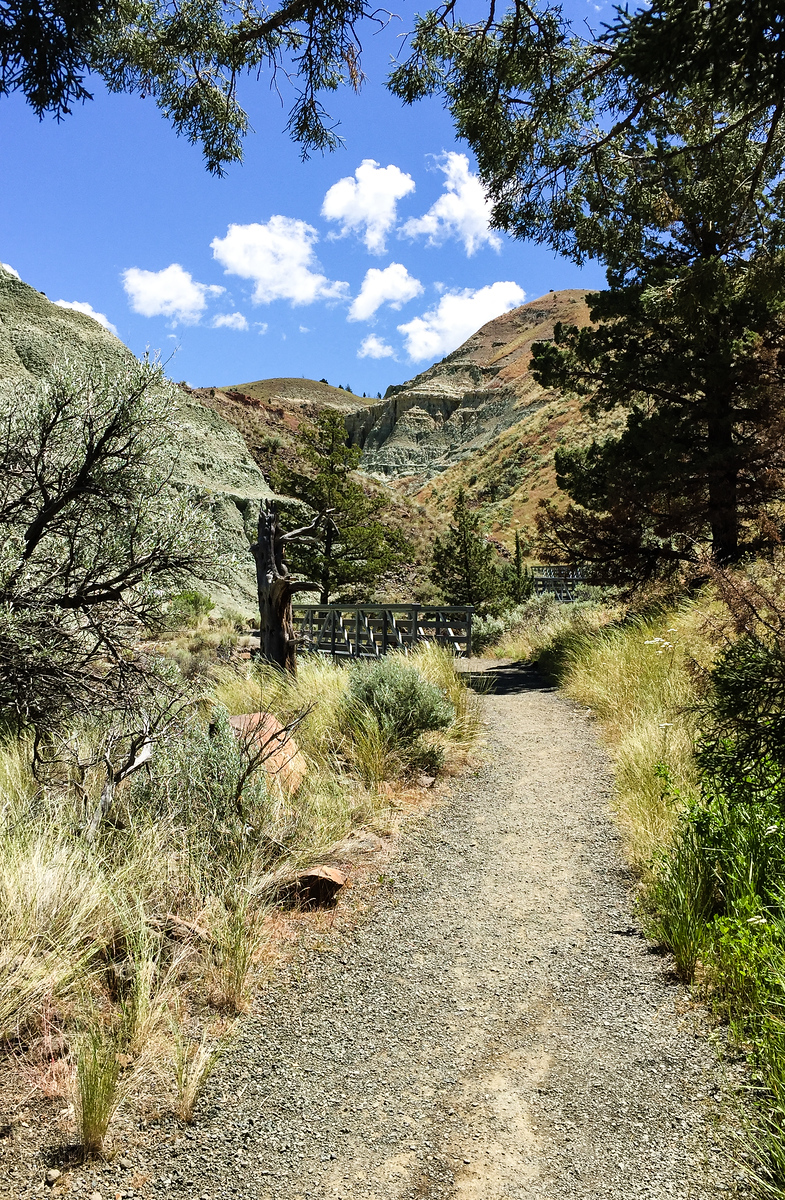 hiking trail leading into a high desert landscape