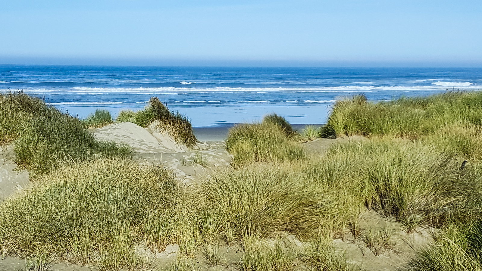 Walk the beach on an Oregon fall trip. #boomertravel #USA #Oregon #Waldport #falltrip