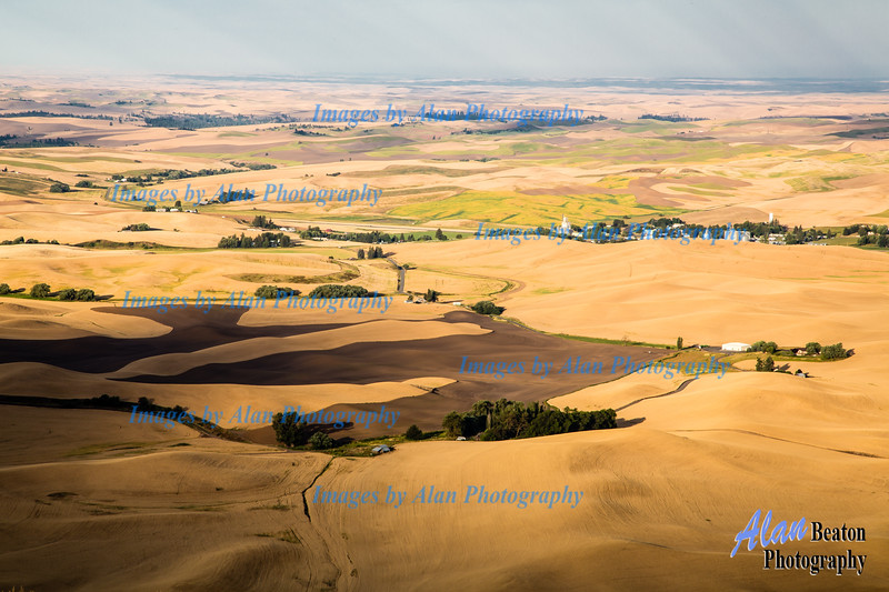 Morning Light, Steptoe Butte, Palouse