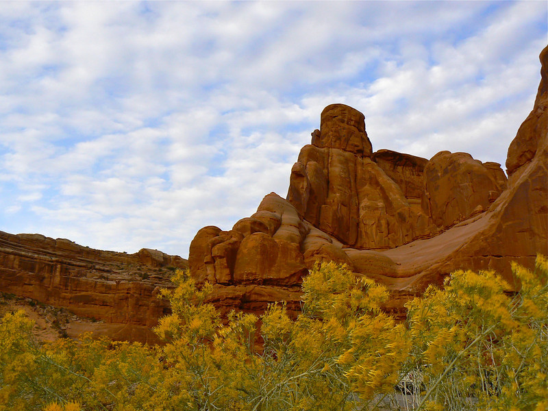 Arches National Park is extra special during fall wildflower season. It's a fun October travel destination for active boomer travelers.