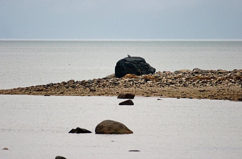 <center>Hudson Bay  <br><br>Churchill, Manitoba, Canada</center>