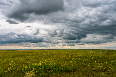 Landscape at Grasslands National Park in Saskatchewan, Canada