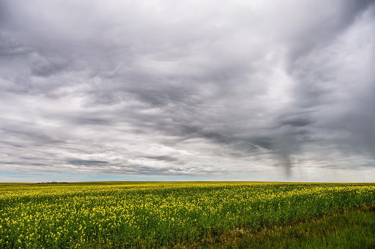 Beautiful prairie at Grasslands National Park in Saskatchewan, Canada