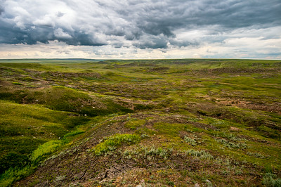 Grasslands at Grasslands National Park in Saskatchewan, Canada