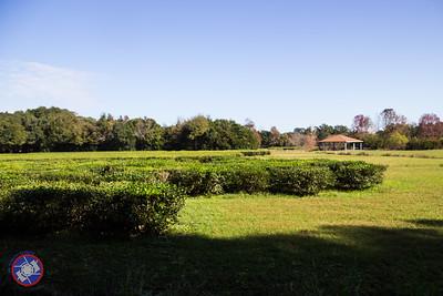 201512 - Charleston-22