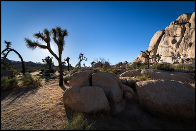 Hidden Valley Campground, Joshua Tree NP