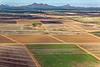 Aerial of Agriculture in Marana, Arizona