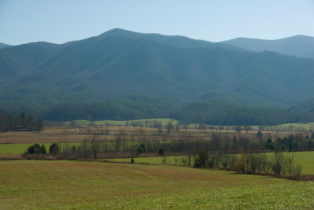 Field and Appalachian Mountains in Great Smokey Mountain NP, Tennessee