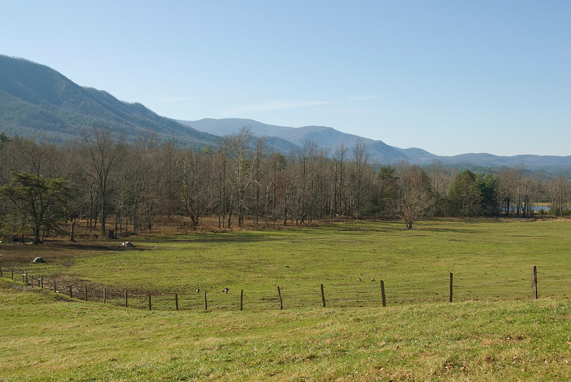Scenic landscape at Great Smoky Mountains National Park, Tennessee