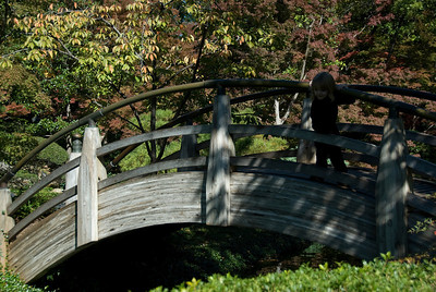 Wooden bridge in Botanical Garden, Fort Worth, Texas