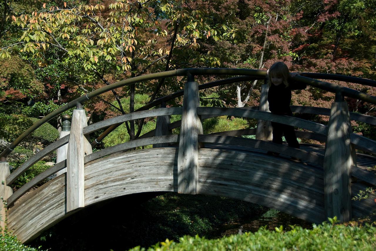 Wooden bridge in Botanical Garden, Fort Worth, Texas