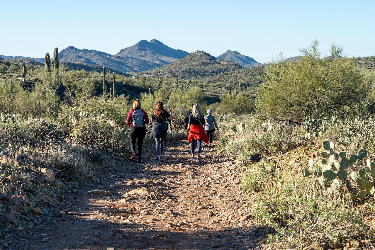 Hiking in the Sonoran Desert in Arizona