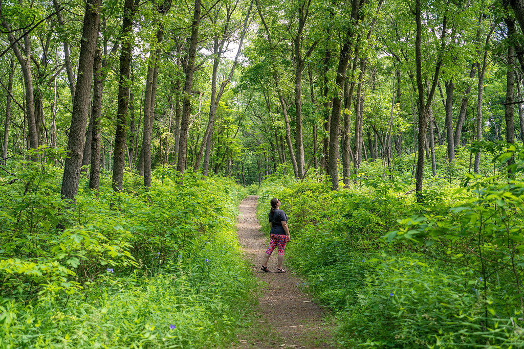 Hiking in Indiana Dunes