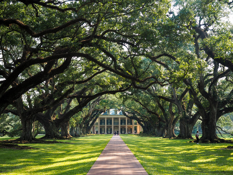 Oak Alley Plantation in Louisiana