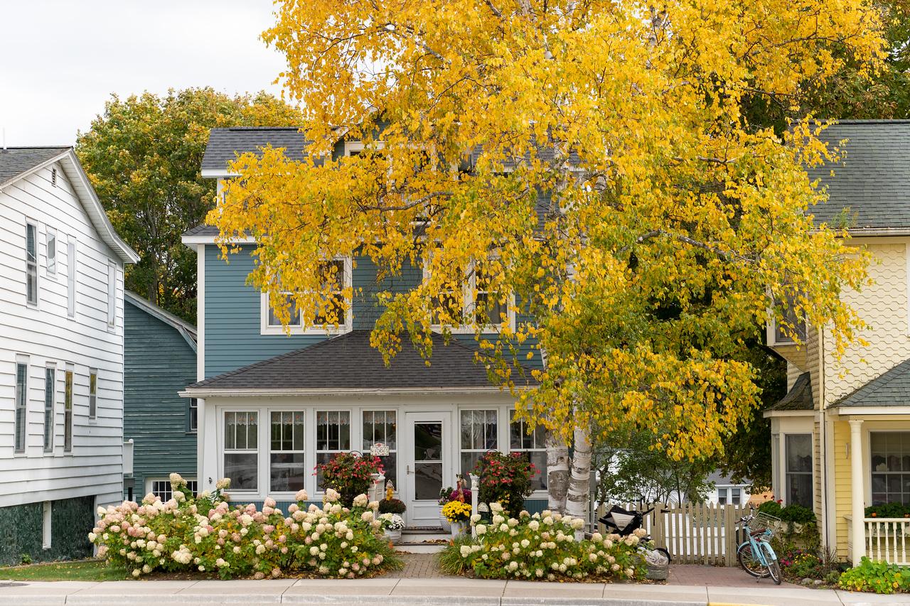 Fall color on Mackinac Island